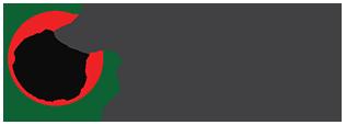Borgo Verginate Logo