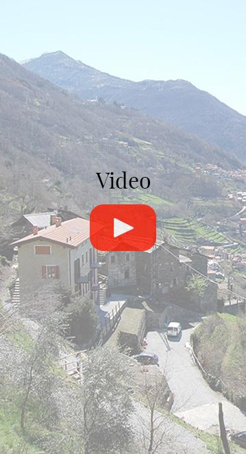 video borgo